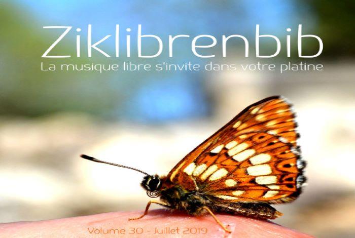 Clé USB volume 30 – Ziklibrenbib
